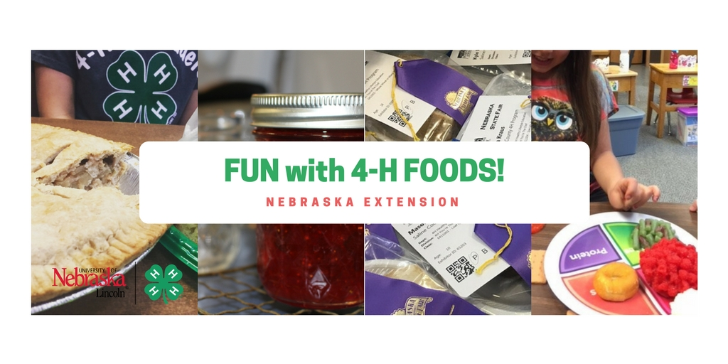 "picture of kids and food with words ""FUN with 4-H FOODS!"