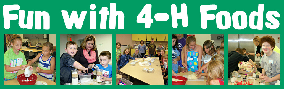 4-H page banner