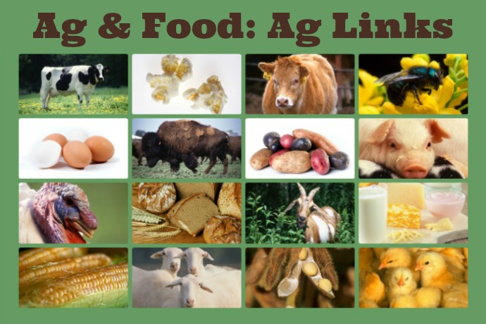 Ag & Food Ag links
