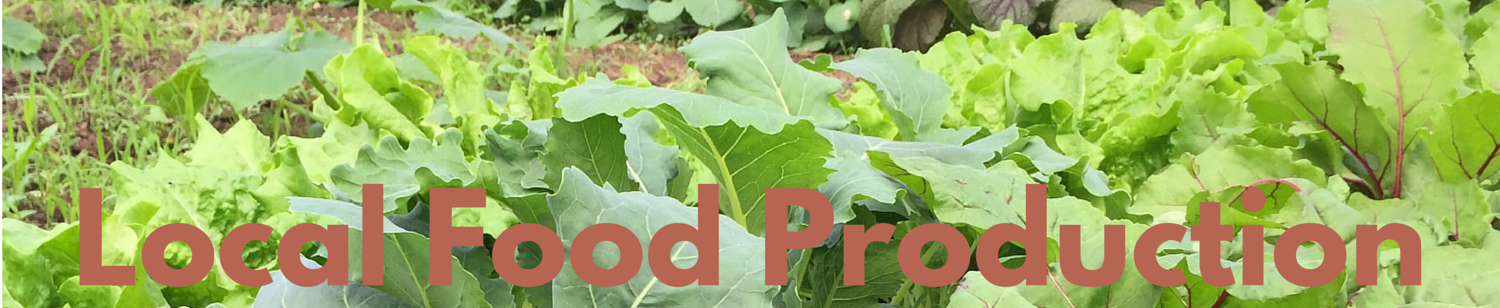 Local Food Production webpage
