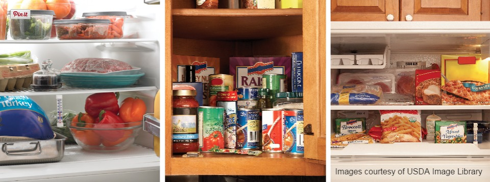 Food Storage In Cupboard, Pantry, Refrigerator, Freezer