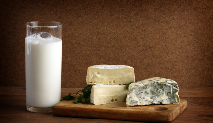 how to make cheese from milk