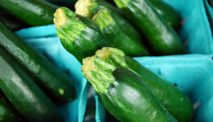 zucchini cooking and freezing tips and recipes