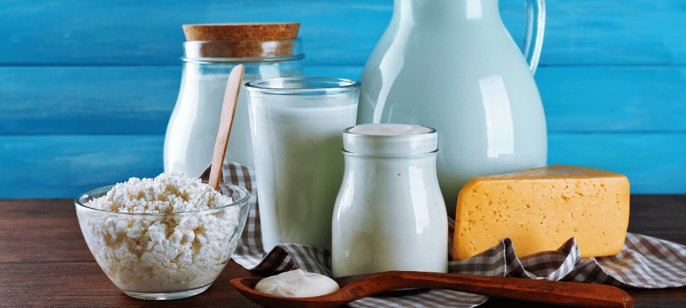 variety of dairy foods such as milk, yogurt, and cheese