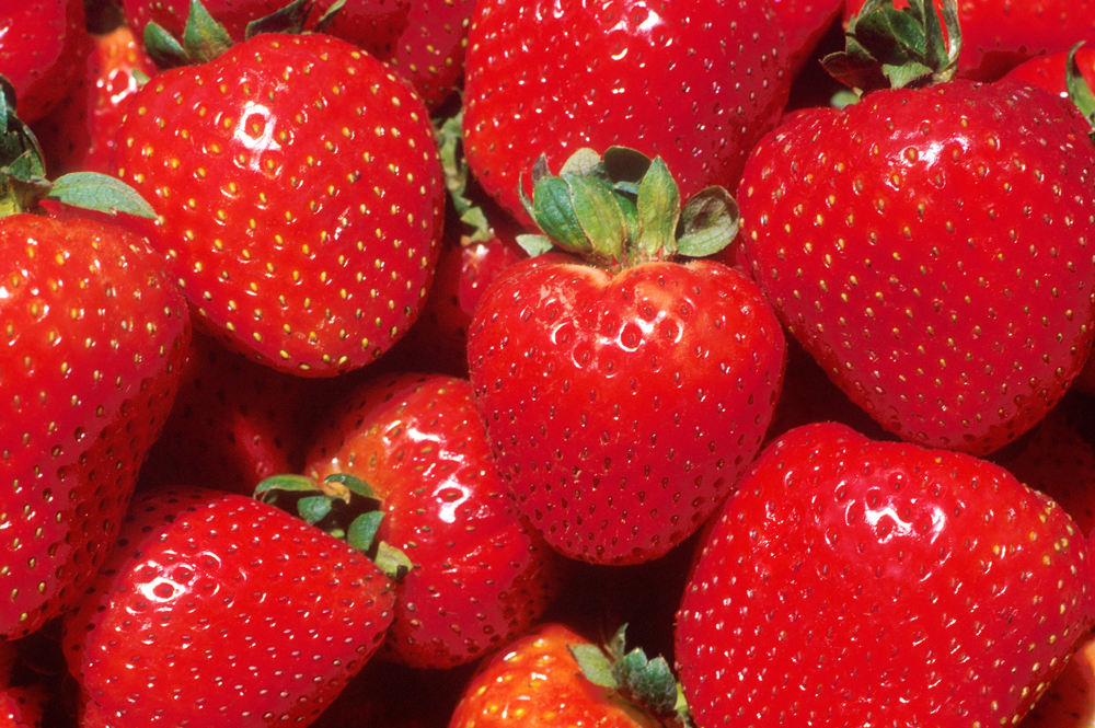 image is filled with strawberries
