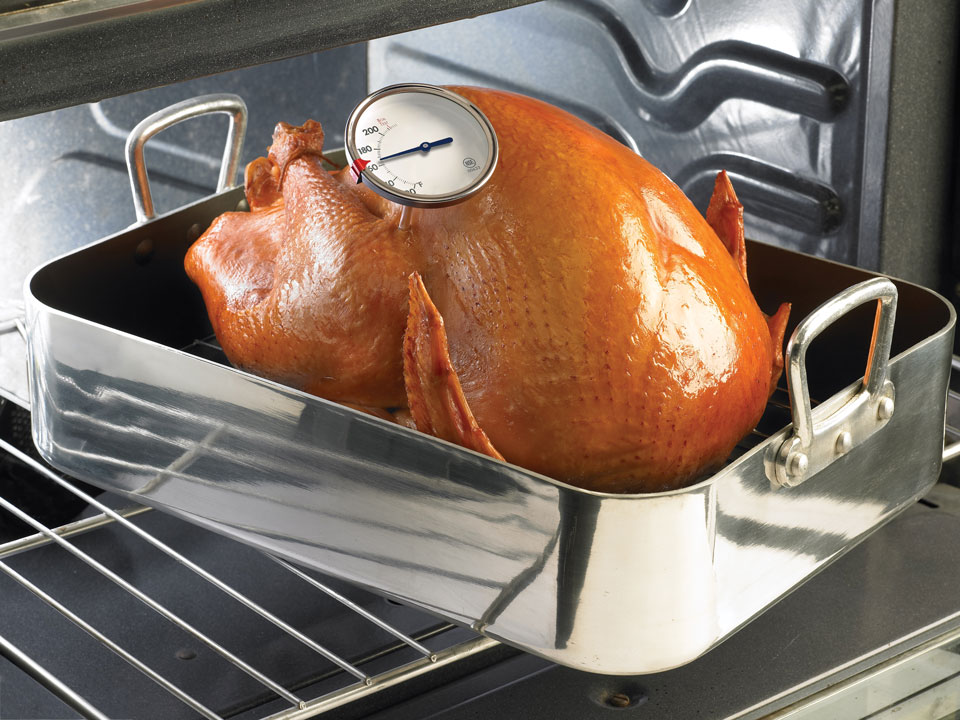 turkey in roasting pan being inserted with a thermometer in its thigh