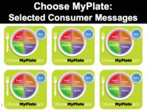 Chose MyPlate image on free downloadable PowerPoint
