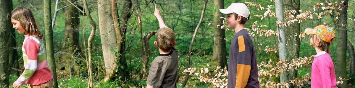 children-hiking