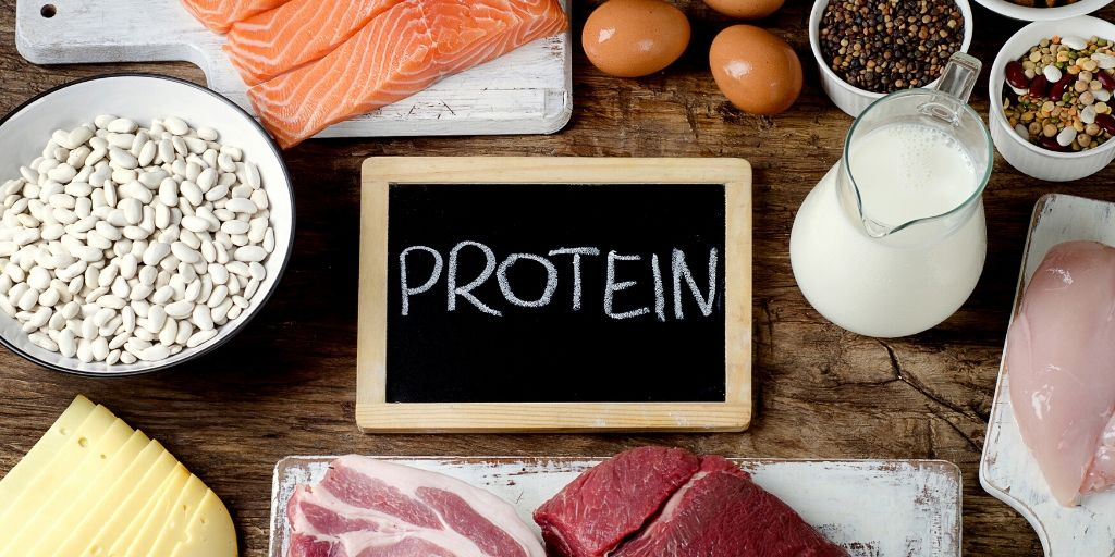 different-types-of-protein