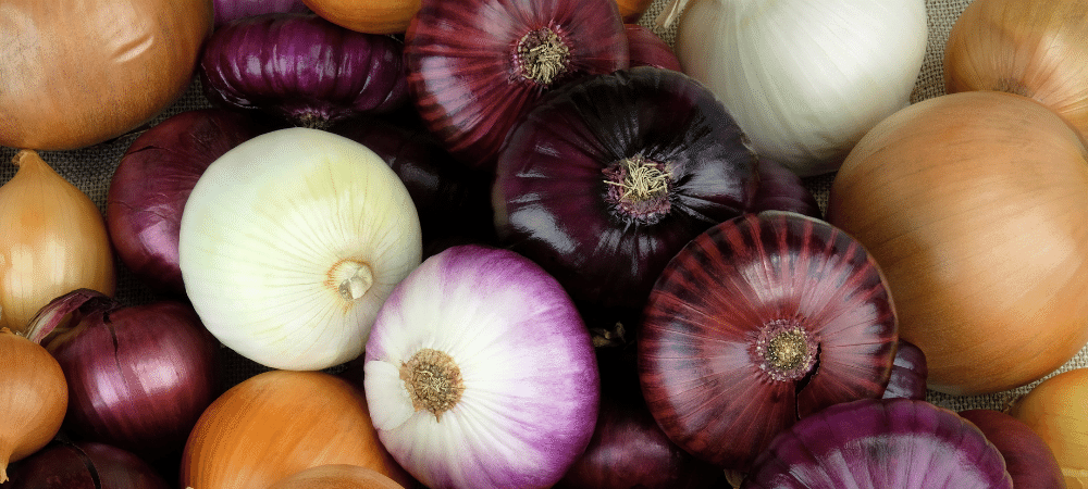 variety of onions