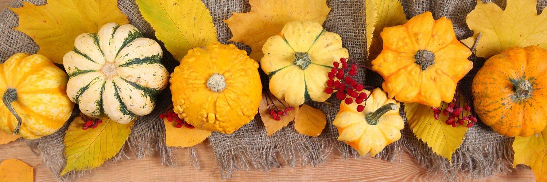 pumpkins-squash