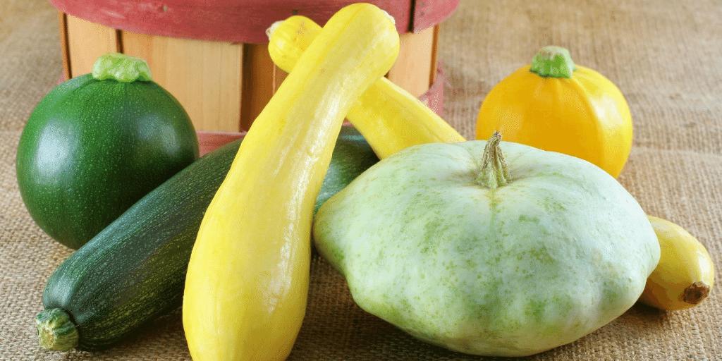 assorted summer squash