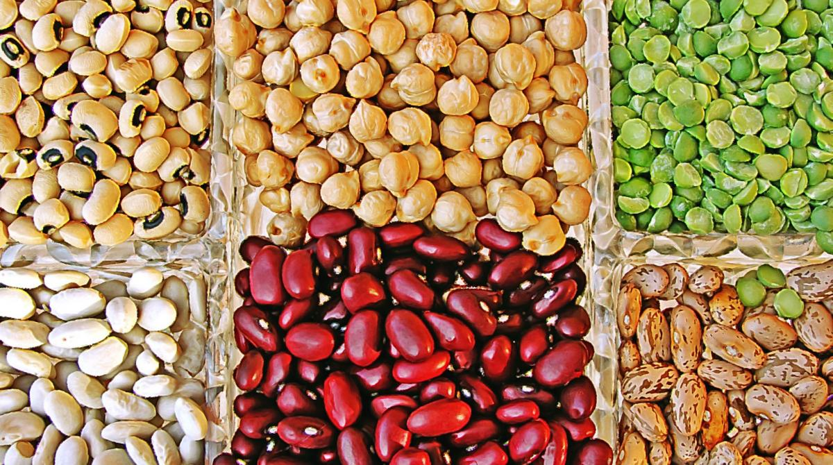 containers of dry beans, peas and lentils