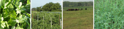 Sustainable Ag tour on August 4