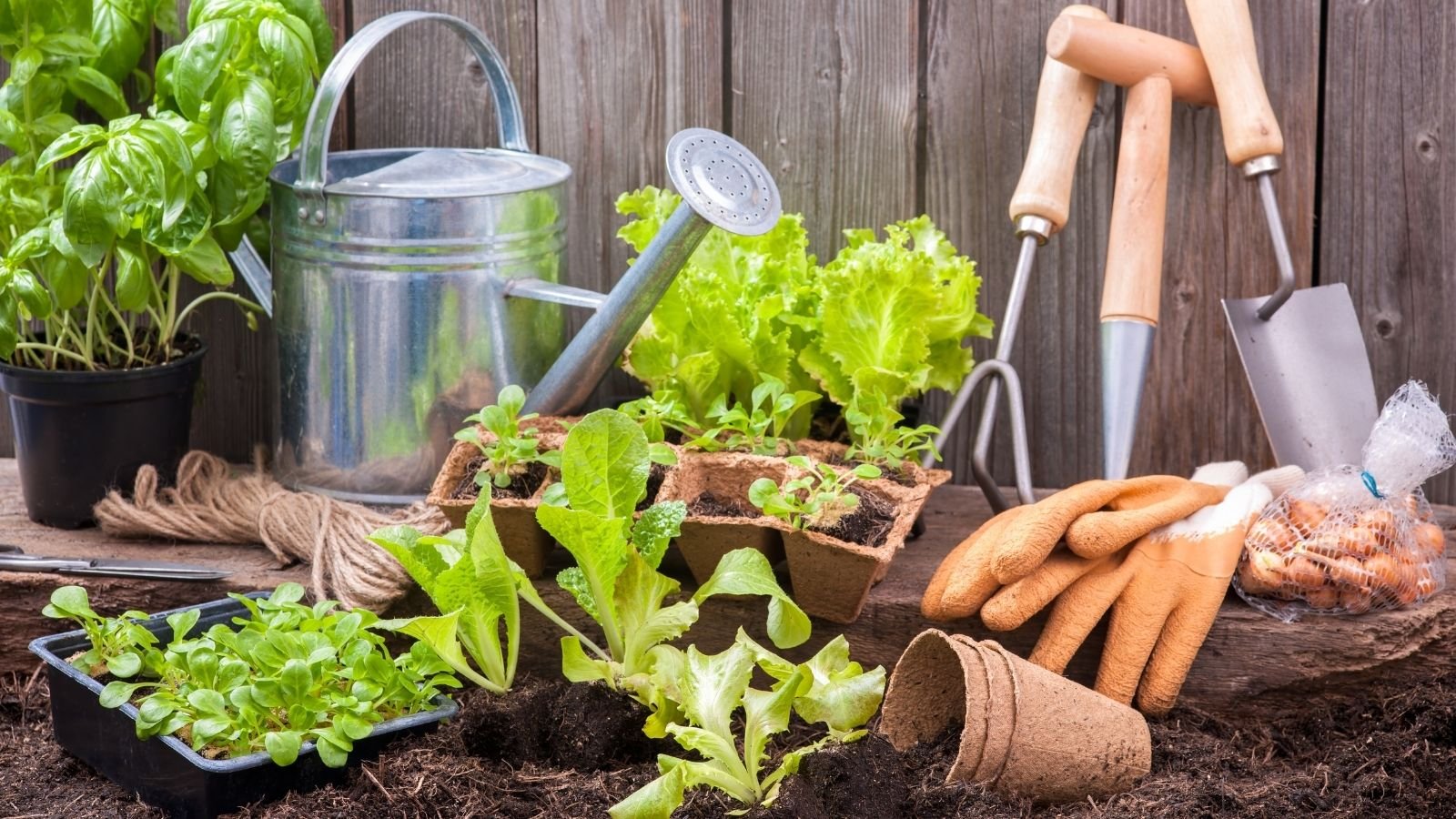 garden month