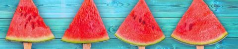 Row of sliced watermelon