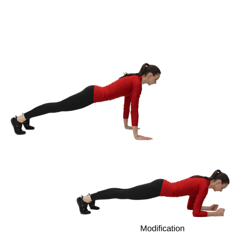 showing the plank hold, which is a bodyweight exercise