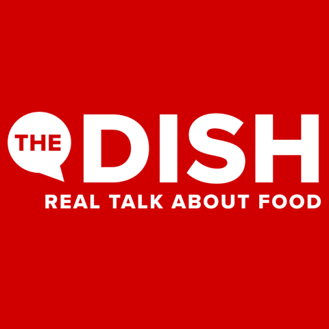 the dish logo