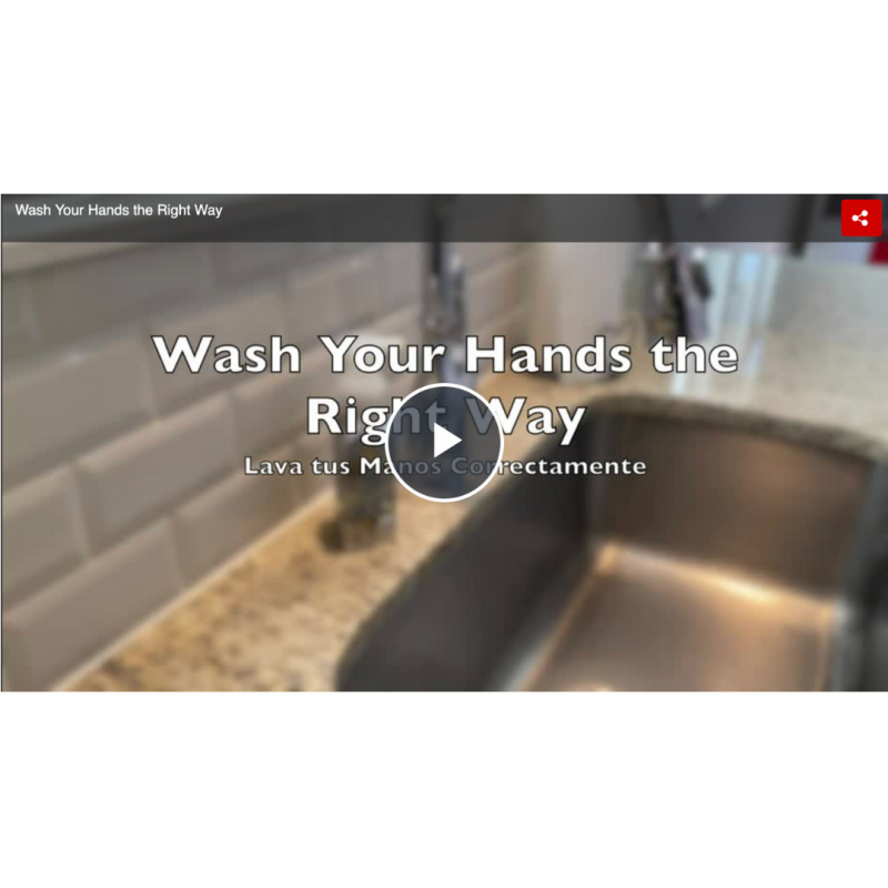 handwashing video