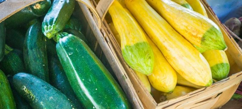 zucchni and yellow summer squash